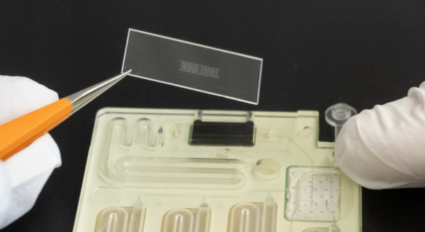 Polymer foil with spotted microarray is placed on sensor channel of na.flow cartridge.